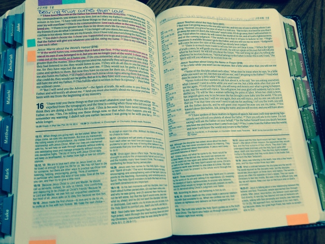 My Fair NLT - The Bible I Actually Understand